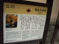 Kamakura14
