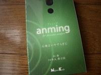 Anming_2